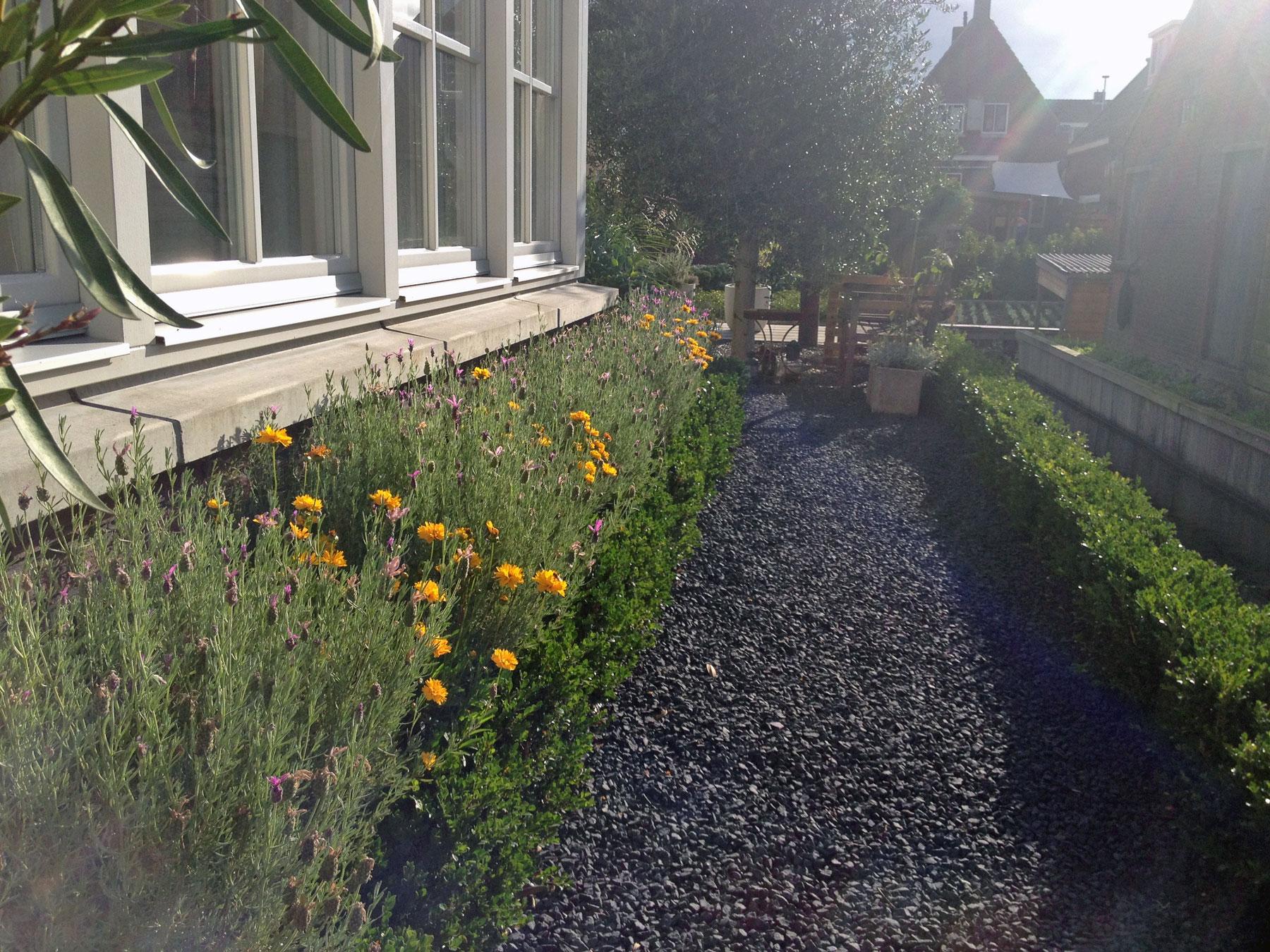 Eigentijdse tuin in hazerswoude green canvas